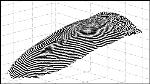 Touchless 3D Fingerprint Recognition Logo