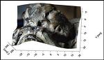 3D Latent and Ancient Fingerprint Logo