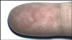 Touchless 2D Fingerprint Recognition Logo